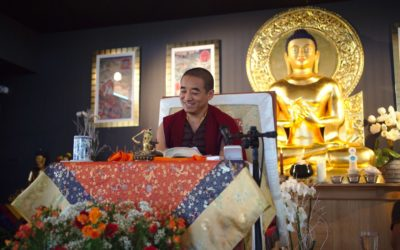 Wise words of advice from Shabdrung Rinpoche