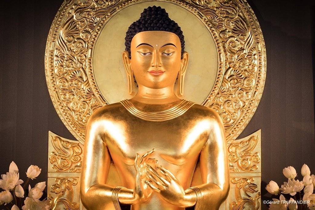 """El Buda del Instituto se encuentra representado ejecutando el mudra de la enseñanza: es el llamado Buda """"de Sarnath"""", nombre del lugar - llamado igualmente parqeu de las Gacelas - donde da su primera enseñanza."""