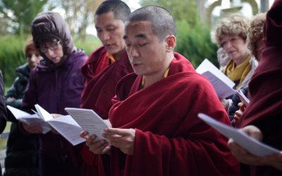 Comprendre la vacuité pour être libre – Stage de Shabdrung Rinpoché sur l'Entrée en la voie médiane